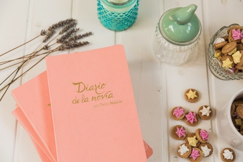 el-diario-de-la-novia3